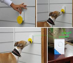 A dog doorbell? It exists.