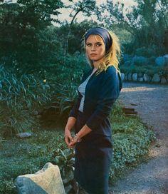 Brigitte Bardot   Mocho's Blog
