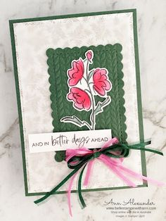 Color & Contour Bundle | Bellestampin with Ann Alexander Bloom Where Youre Planted, Color Contour, Better Day, Glue Dots, Quick Cards, Embossing Folder, Garden Inspiration, Free Gifts, Stampin Up