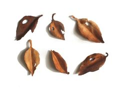 レザーブローチ【fallen leaves】type.7 - Fish Born Chips