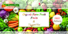 News 6, Organic Farming, Fresh Fruit, Good Times, Vegetables, Organic Gardening, Vegetable Recipes, Veggies