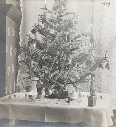 vintage photo 1909 Christmas Tree Old Fashioned by maclancy, $14.00