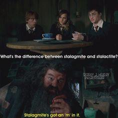 The wisdom of Hagrid.