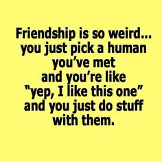 @naobeney88 @calebmcnear A Collection of 28 #Funny #Friendship #Quotes to Enjoy Love you both!! :)