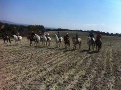 Paseos a caballos inigualables en Alcantaraecuestre.com