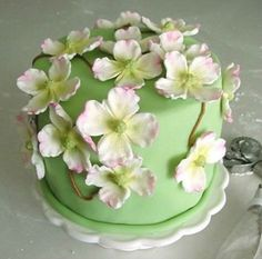 I have started teaching how to make the Dogwood Cake because the flowers are simple flower to make and quite impressive to look at.