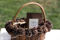 This would be a super cute flower girl basket if you stuck to the pine cone thing Pinecone Centerpiece, Pinecone Ornaments, Centerpiece Ideas, Pine Cone Wedding, Winter Wedding Inspiration, Wedding Ideas, Wedding Stuff, Dream Wedding, Winter Wedding Flowers