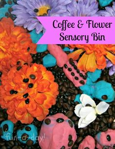 Coffee and Flower Sensory Bin -- a great-smelling sensory bin that can also double as a pretend play bin