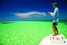 Fly fishing in the Florida Keys #seewhatsoutthere