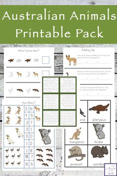 This Australian Animals Printable Pack includes 60 pages of literacy and numeracy activities for young children.