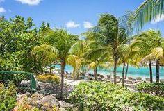 Resultado de imagen para imagenes tropicales de playa