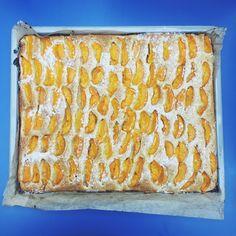 Frischer Bio Marillenkuchen / Fresh organic apricot cake Organic Recipes, Vegetarian, Lunch, Bread, Vegan, Healthy, Food, Fresh, Meal