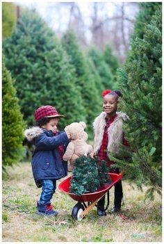 Christmas Tree Farm Session Ramnarinesingh Family » New Jersey Wedding Photographer Digna Toledo