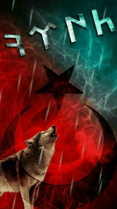 Türkiye this the real first Turks time that's how it spell Crazy Wallpaper, S8 Wallpaper, Azerbaijan Flag, Turkey Flag, Turkish People, Wolf Tattoo Design, Freemasonry, Ottoman Empire, Special Forces