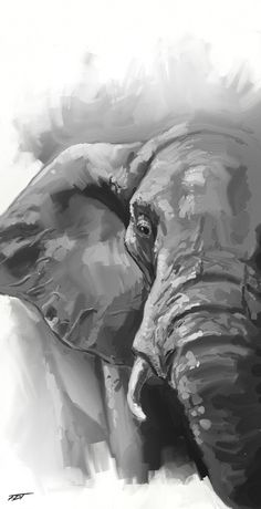 Painting of elephant