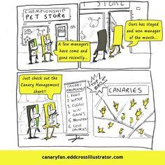 Canary Fan Season 6 Cartoon #12