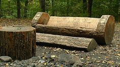 Carved Log Bench and Footrest