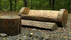 Carved Log Bench and Footrest