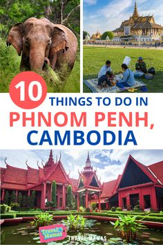 Phnom Penh with kids is a fun and accessible adventure. Cambodia might not immediately spring to mind as a family vacation destination, but this amazing country offers a lot of great activities that all ages enjoy. The country's capital is a welcoming city with numerous attractions for families. Enjoy these 10 kid-friendly things to do in Phnom Penh. #phnompenh #cambodia #familytravel #travelwithkids Family Vacation Destinations, Dream Vacations, Travel Destinations, Vacation Ideas, Travel With Kids, Family Travel, Group Travel, Travel Inspiration, Travel Ideas