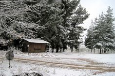 With snow forecast for the Western Cape on Sunday, here are the best places to visit to experience the snow this weekend. Cherry Farm, Cape Town, Picture Show, Cool Places To Visit, The Good Place, Westerns, Stuff To Do, To Go, Snow