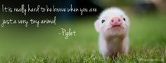 Enlarged and text from Winnie the Pooh added. Piglet talking to rabbit.