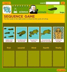 Frog Activities (from Mrs. Wills Kindergarten)