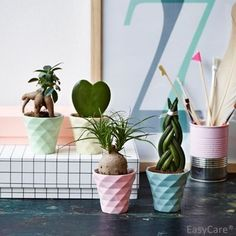 Pastel colourful ceramic pots - Ideal for use on shelves and windowsills -  Present for Family and Friends.