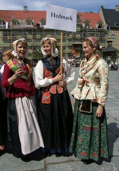 Hedmark Bunads: Parade of Costumes Day in 2005 at the Norsk Folkemuseum in Oslo, Norway. Beautiful Clothes, Beautiful Outfits, Norwegian Clothing, Norwegian Wedding, Fantasy Gowns, Going Out Of Business, Bridal Crown, Folk Costume, My Heritage