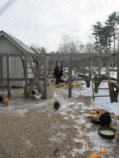 Martha Stewart's Chicken Coop