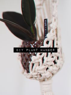 this is one of my favorite plant hanger for smaller plants, it's so chic and cute 🖤 Small Plants, Plant Hanger, Diy Tutorial, Macrame, Chic, Crafts, Shabby Chic, Elegant, Manualidades