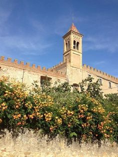 Bolgheri - A Super Tuscan Village Bolgheri is a small medieval village only a few kilometers from the seaside in the heart of the Etruscan coast of Tuscany.  Read the article on our blog Italian Talks