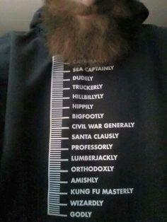 Beard meter