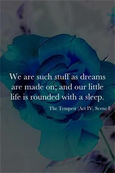 we are such stuff as dreams are made on, and our little life is rounded with a sleep - prospero, the tempest/shakespeare