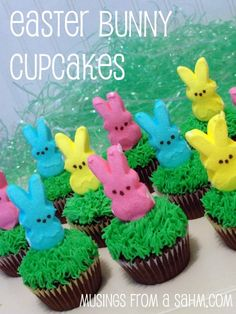 Easter Bunny Cupcakes Recipe - how adorable are these!! Bet they are super sweet too!  Sweet Pea would LoVe these!