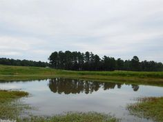 Picture perfect cattle property! Gorgeous 160 acres is fenced and crossed-fenced, has 2 wells and 4 ponds! in Maynard AR