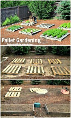 How to Build a Pallet Vegetable Garden - 30 DIY Pallet Garden Projects to Update Your Gardens - DIY & Crafts