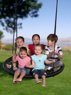 A giant spinning swing that can hold up to 660lbs: http://www.walletburn.com/X-large-Swing-and-Spin_958.html