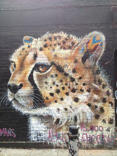 african cheetah by Louis Masai Michel