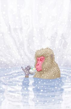 """This image I did last year """"Japanese Snow Monkey Drinking Hot Tea was recently honored by being chosen for American Illustration T. Monkey Illustration, American Illustration, Digital Illustration, The Clipper, Sencha Green Tea, Monkey Art, Monkey Drawing, Rare Birds, Animation"""