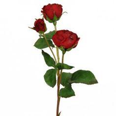 Floratexx Webshop - 1.1 - Blumen