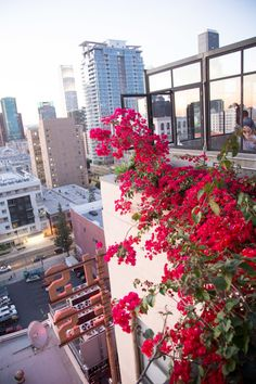 Ace's rooftop bar at sunset.  Travelogue: Los Angeles (Part Two) - Hither & Thither