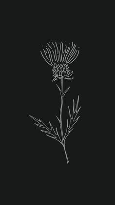 Balanced Thistle (accupuncture clinic) logo and brand designed by Amari Creative. Bild Tattoos, New Tattoos, Small Tattoos, I Tattoo, Tattoo Time, Scottish Tattoos, Scottish Thistle Tattoo, Horse Logo, Logo Branding