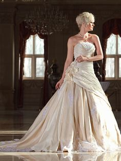 Lan Ting A-line Plus Sizes Wedding Dress - Champagne Cathedral Train Strapless Taffeta/Lace - USD $249.99