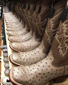 """ffd11e66a8 El Potrerito Western Wear on Instagram  """"Los Altos Boots aquí en tu tienda   elpotrerito la mejor marca de botas exóticas 👌🏻🔥"""""""