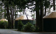 Yurts make winter camping on Oregon Coast a cozy adventure