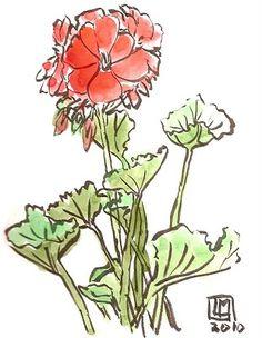 Des géraniums, j'adore leur odeur. Creations, Plants, India Ink, Lawn And Garden, Plant, Planting, Planets