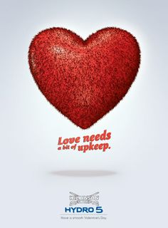 happy Valentines day from Wilkinson