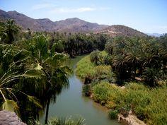 The oasis town of Mulegé, Baja California Sur, Mexico.    (c) Iriza84   Dreamstime.com http://bajabybus.com/our-tour/6