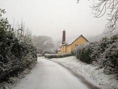 Walnut Tree Cottage, Bossington.