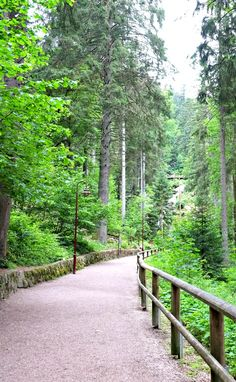 Exploring customs and traditions in the Black Forest in Germany.